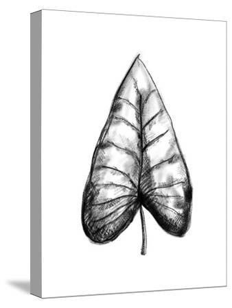 Palm Leaf Illustration-Jetty Printables-Stretched Canvas Print
