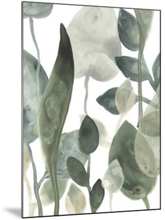 Water Leaves III-June Erica Vess-Mounted Art Print