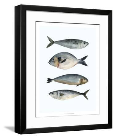 Four Fish II-Emma Scarvey-Framed Giclee Print