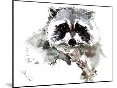 Raccoon 1-Suren Nersisyan-Mounted Art Print