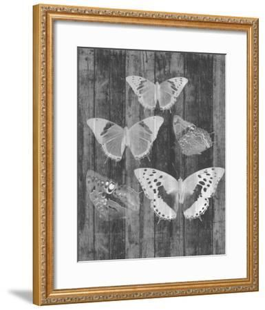 Rustic Butterfly Chart II-Jennifer Goldberger-Framed Art Print