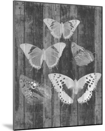 Rustic Butterfly Chart II-Jennifer Goldberger-Mounted Art Print