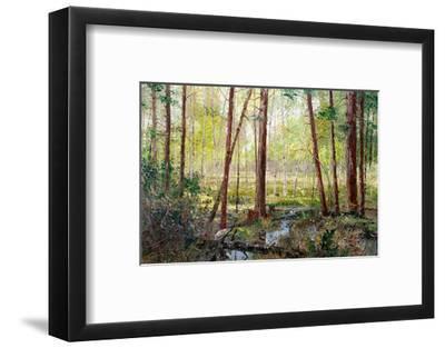 Forest Edge-Robert Moore-Framed Art Print