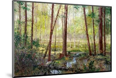Forest Edge-Robert Moore-Mounted Art Print