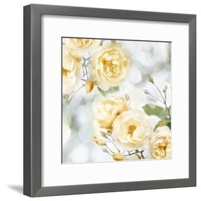 Yellow Rose Garden I-Joanna Lane-Framed Giclee Print