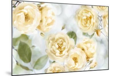 Yellow Rose Garden III-Joanna Lane-Mounted Giclee Print