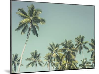 Palm Grove-Chris Simpson-Mounted Giclee Print