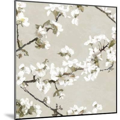 Confetti Bloom II-Tania Bello-Mounted Giclee Print