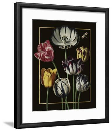 Ornamental - Thierry Luxe-Stephanie Monahan-Framed Giclee Print