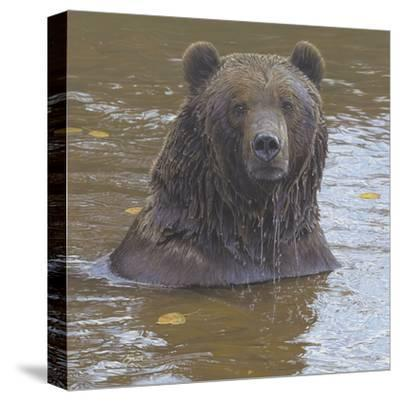 Autumn Immersion-Daniel Smith-Stretched Canvas Print