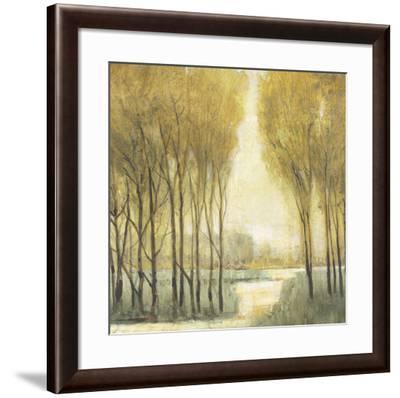 Pathway Sanctuary-Tim O'toole-Framed Art Print