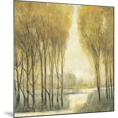 Pathway Sanctuary-Tim O'toole-Mounted Art Print