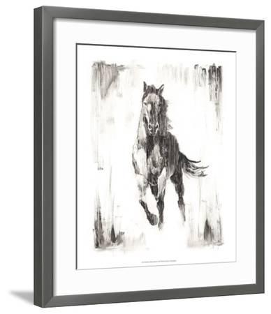Rustic Black Stallion II-Ethan Harper-Framed Art Print
