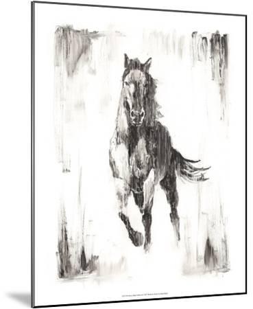 Rustic Black Stallion II-Ethan Harper-Mounted Art Print