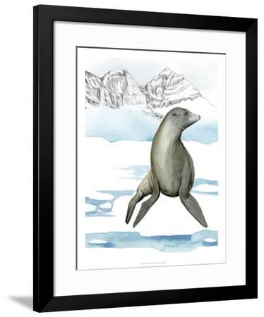 Arctic Animal IV-Grace Popp-Framed Art Print