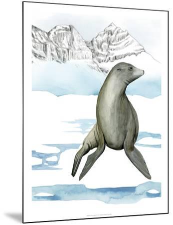 Arctic Animal IV-Grace Popp-Mounted Art Print