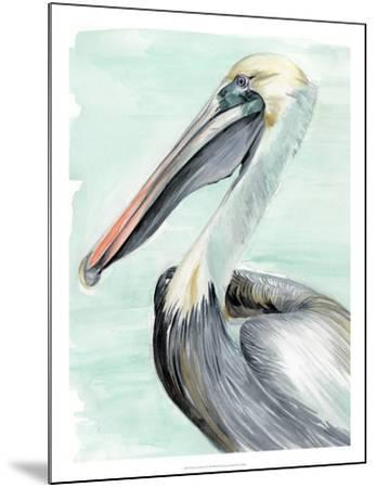 Turquoise Pelican II-Jennifer Paxton Parker-Mounted Giclee Print