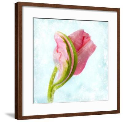 Floret I-Sia Aryai-Framed Giclee Print