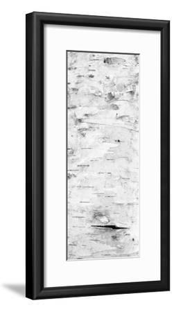 Birch Bark V (BW)-William Neill-Framed Giclee Print