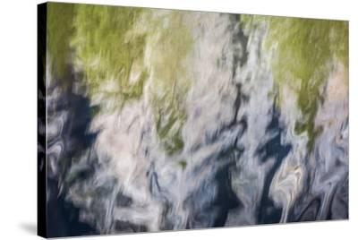 Yosemite III-William Neill-Stretched Canvas Print