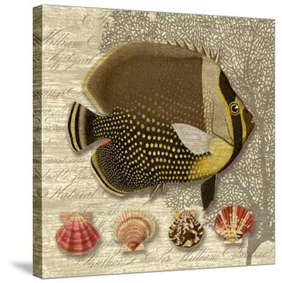 Angelfish Trio I-Suzanne Nicoll-Stretched Canvas Print