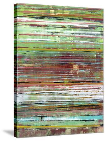 Fine Lines l-Jodi Fuchs-Stretched Canvas Print