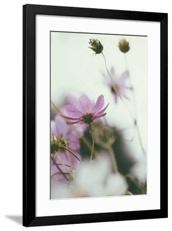 Afterlight-Irene Suchocki-Framed Giclee Print