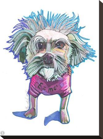 Einstein Dog Bert-Solveig Studio-Stretched Canvas Print