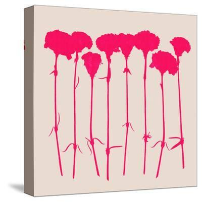Carnations 2-Garima Dhawan-Stretched Canvas Print