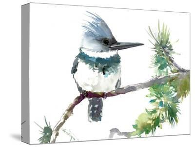 Belted Kingfisher 2-Suren Nersisyan-Stretched Canvas Print