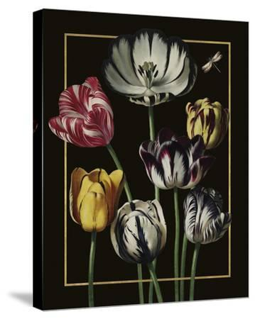 Ornamental - Thierry Luxe-Stephanie Monahan-Stretched Canvas Print
