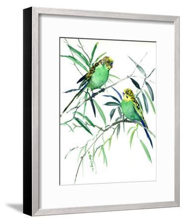 Parakeets Budgies-Suren Nersisyan-Framed Art Print