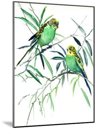 Parakeets Budgies-Suren Nersisyan-Mounted Art Print