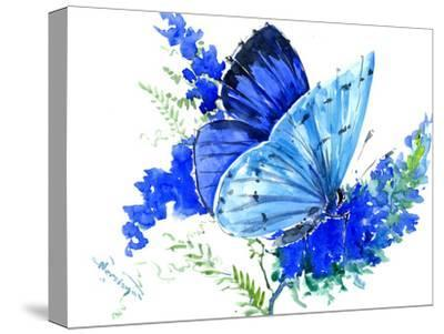 Holly Blue Butterfly 1-Suren Nersisyan-Stretched Canvas Print