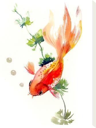 Goldfish 2-Suren Nersisyan-Stretched Canvas Print