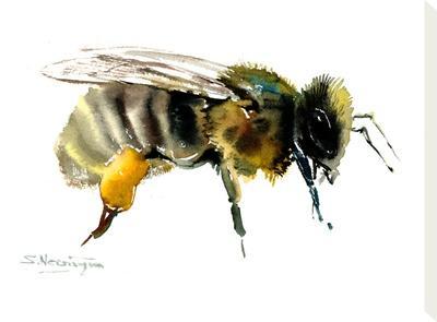 Honey Bee-Suren Nersisyan-Stretched Canvas Print