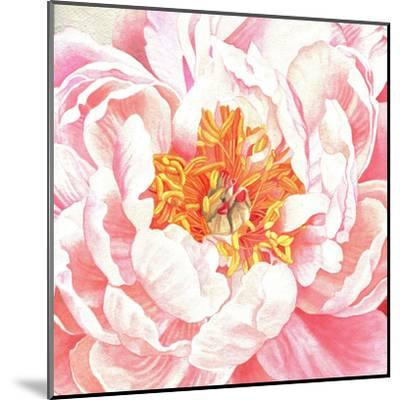 Large Peach Peony-Elizabeth Hellman-Mounted Art Print