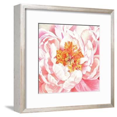 Large Peach Peony-Elizabeth Hellman-Framed Art Print