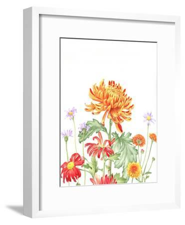 Chrysanthemum Card-Elizabeth Hellman-Framed Art Print