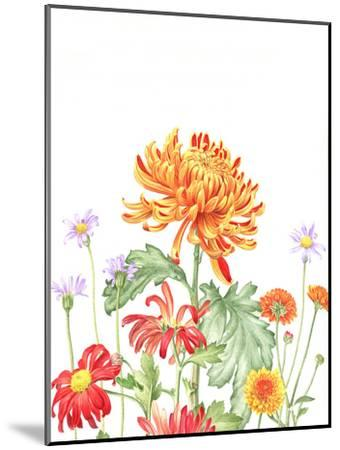 Chrysanthemum Card-Elizabeth Hellman-Mounted Art Print