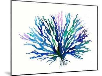 Coral 1-Rachel McNaughton-Mounted Art Print