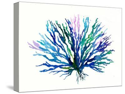Coral 1-Rachel McNaughton-Stretched Canvas Print