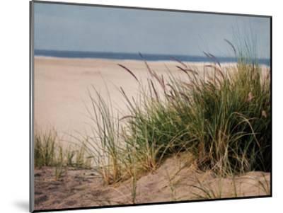 To The Beach II-Elizabeth Urquhart-Mounted Art Print