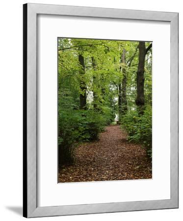 Wood 3-Stephanie Frances-Framed Art Print