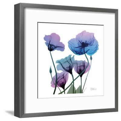 Radiant Bloom 1-Albert Koetsier-Framed Art Print