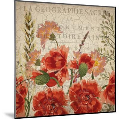 Springtime Blooms-Kimberly Allen-Mounted Art Print