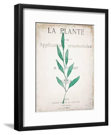 Botanical Pages 1-Kimberly Allen-Framed Art Print