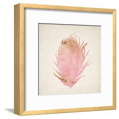 Pink Peacock 2-Kimberly Allen-Framed Art Print