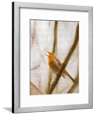Bird on a Branch 2-Kimberly Allen-Framed Art Print