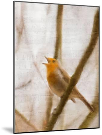Bird on a Branch 2-Kimberly Allen-Mounted Art Print